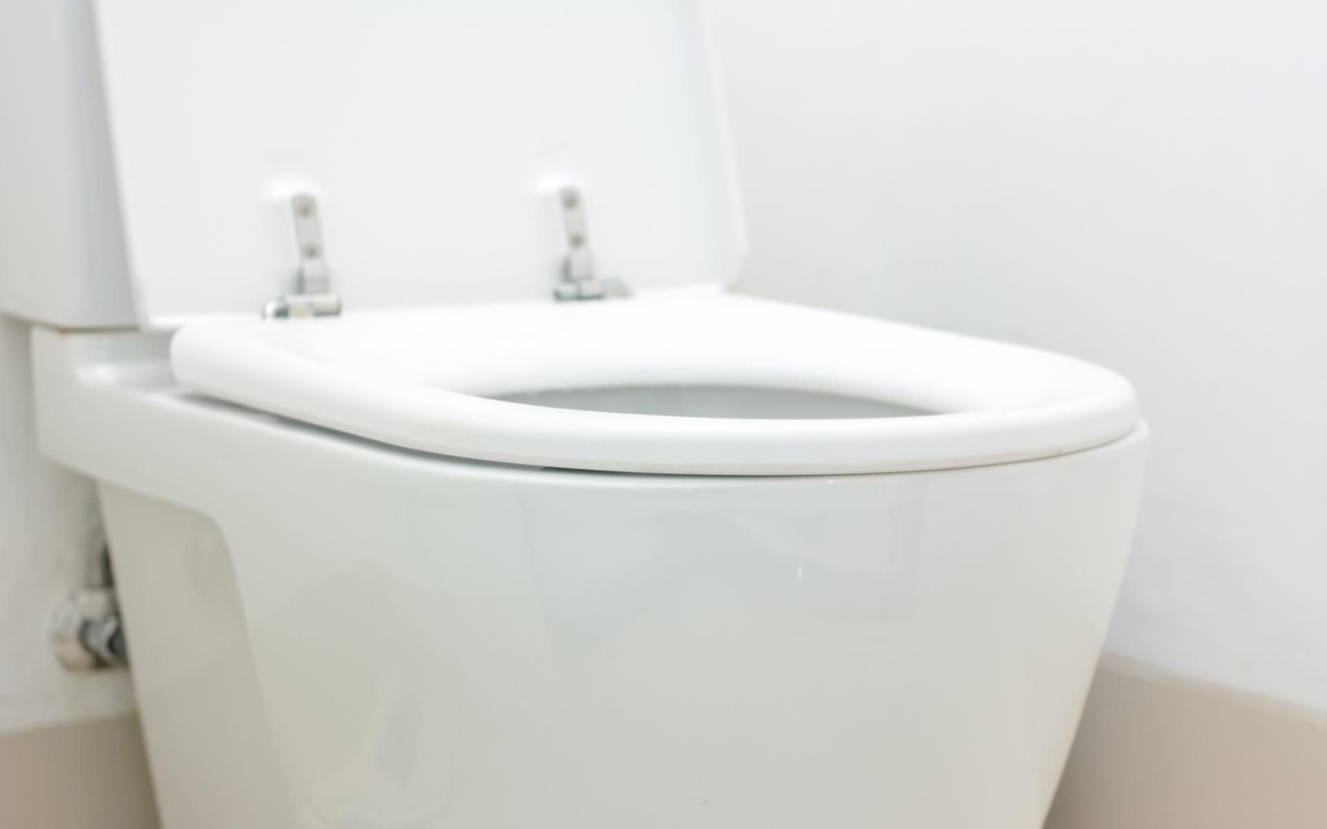 Seminole Toilet Repair